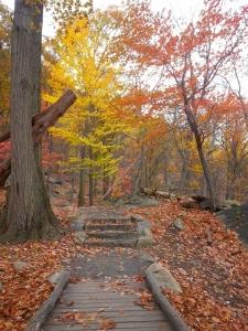 Golden trail back up
