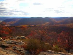 Top of Bear Mountain